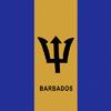 1010216S-Bandana.jpg