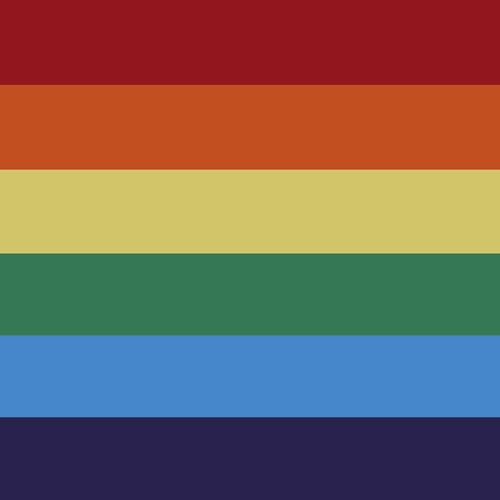 Gay Bandana Colors 80