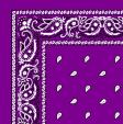 1040007-GRAPE-PAISLEY-BANDANA.jpg