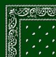 1040022-HUNTER-GREEN-PAISLEY-BANDANA.jpg