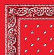 1040033-HOT-ORANGE-PAISLEY-BANDANA.jpg